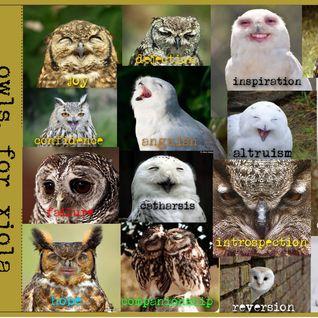 Owls for Xiola
