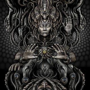 Feeria Noptii - Sacred Habitat 016 Guest Mix [14 Dec 2013]