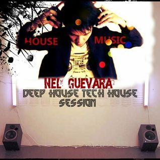 Nel guevara  deep house/techouse mixtape. 2013/07/25