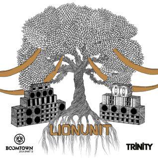 Lion Unit @ Boom Town Fair 2014 - Tangled Roots (Part 3)