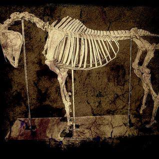 Watersmooth Silver Stallion Mix (04_04_14)