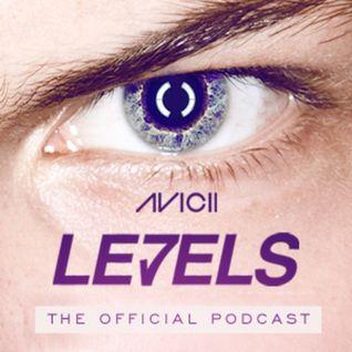 Avicii - Levels 053