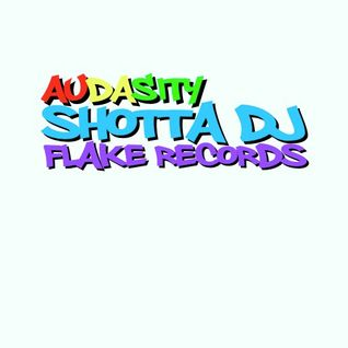 SHOTTA DJ - AUDASITY - FLAKE RECORDS - DIRTY DARK DRUM N BASS - 104
