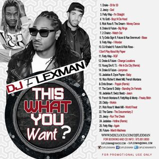 THIS WHAT YOU WANT? (Hip Hop Cd)