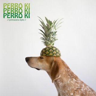 Perro Ki // primavera style //