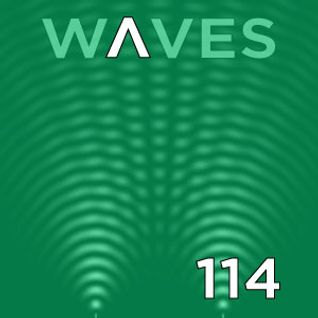 WΛVES #114 - 40 YEARS of PUNK THE ENDLESS HISTORY by FERNANDO WAX - 16/10/2016