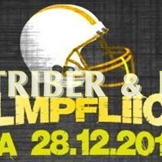 RUMTRIBER&I-REC@HELMPFLICHT 28.12.2013