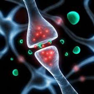 neurostransmetteur by mike.d mmx