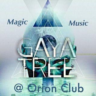 GayaTree @ Orion Art Space . Part 2