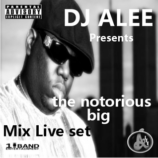 BIGGIE (LIVE MIX) DJ ALEE
