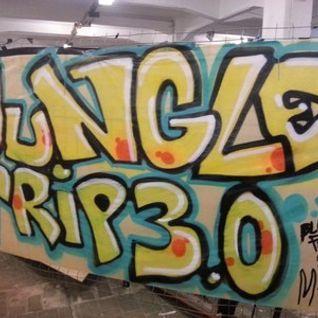Default live @ jungletrip 3.0 - plauen 31st may 2013 (with dubwiser mc & monch mc)
