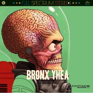 Niko Street-Bronx Yhea Remix Meshup