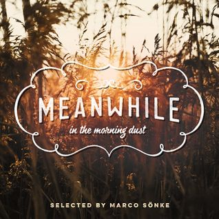 meanwhile … in the morning dust (2014)