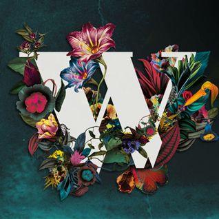 Wilderness Valley 2015 - Mojo Filter mixtape