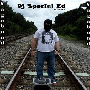 Dj Special Ed - Vagabond_ truelectro