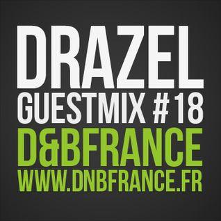 Guest Mix DnbFrance #18 - Drazel