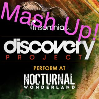 Insomniac Discovery Project:Nocturnal Wonderland