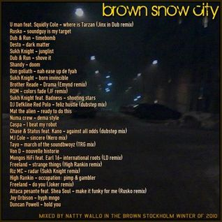 brown_snow_city