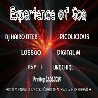 RICOLICIOUS @ * * EXPERIENCE of GOA * * 13.05.16