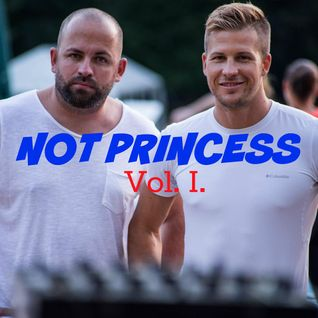 Szívós Zoltán & Johnnie Pappa presents Not Princess Vol. I.