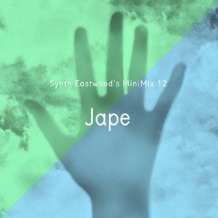 SE Minimix 012 - Jape