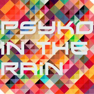 Psyko in rainstorm BenFleXx Mix 2013