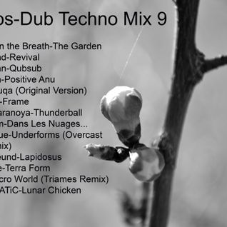 Knolios-Dub Techno Mix 9
