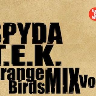 Strange Birds Mix Vol.2