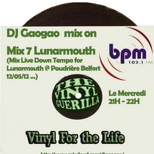 DJ Gaogao on BPM Mix (mix 7) Lunarmouth 13/06/12 only Vinyl