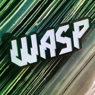 Dj Wasp all vinyl classic D&B set @ M&T XL - Nov 2015