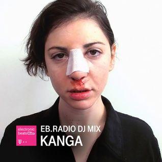 DJ MIX: KANGA