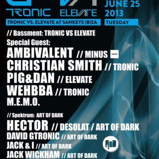 Wehbba - Opening Set @ Sankeys - Ibiza (Tronic vs. Elevate) - 25-06-2013