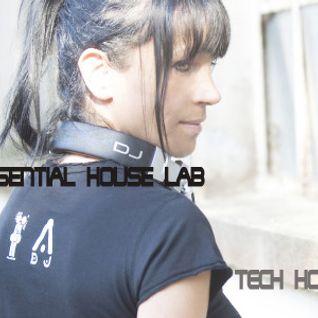 Essential House Lab #2