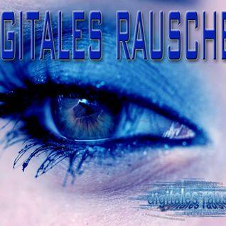 Ma-Cell - digitales rauschen - 09.01.2014