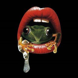 Dj Frogg - Les Aventures de l'Homme Grenouille