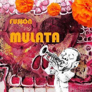 Fusión Mulata 3