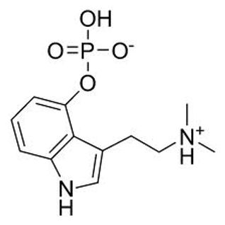 Psilocybin D-N-A Xtractor