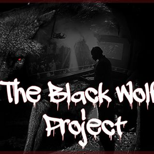 The Black Wolf proJect #2