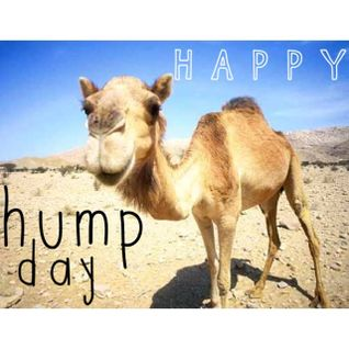 Happy Hump Day! Vol. 1