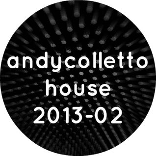 andycolletto house 2013-02
