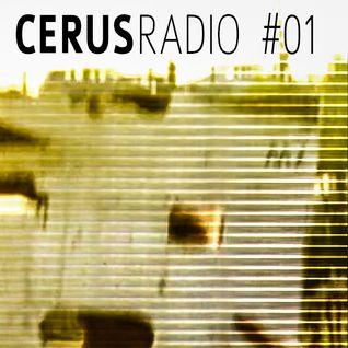 CERUSradio #1 | Matthew Fennemore