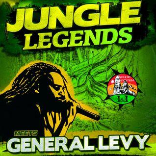 Rastafilya - Live Mix For Competition (Jungle Legends ft GENERAL LEVY)