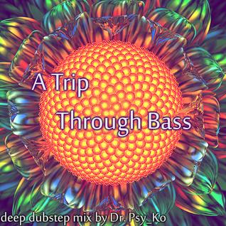 A Trip Through Bass