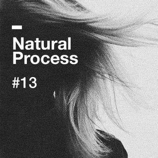 Natural Process #13