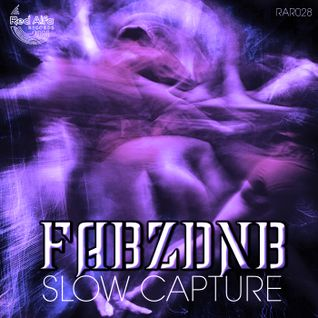 Fabzdnb - Slow Capture (CLIP)