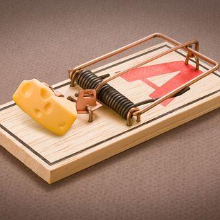 Smooth - cheese in da trap