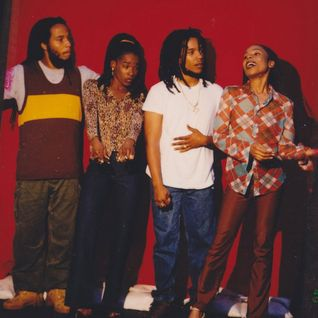 Ziggy Marley & the Melody Makers 08/07/93 World Music Theater, Tinley Park, IL A+ FM