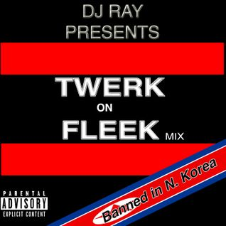 Twerk on Fleek Dj Ray Mix