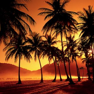 Enjoy and Be Educated #1422: Palm Trees and Pineapples, Pt. 2 (Hip-Hop, Hawaiian, Funk, Alternative)