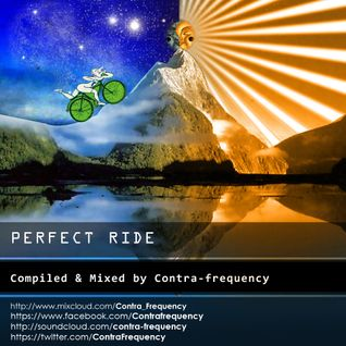 Perfect Ride _Compiled & Mixed By Contra-Frequency